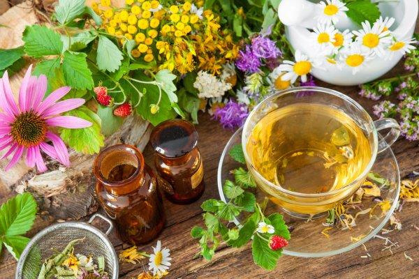 Naturopatia-Jesi - Officina del corpo Jesi - benessere